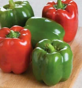 Peppers Better Belle Green Pepper